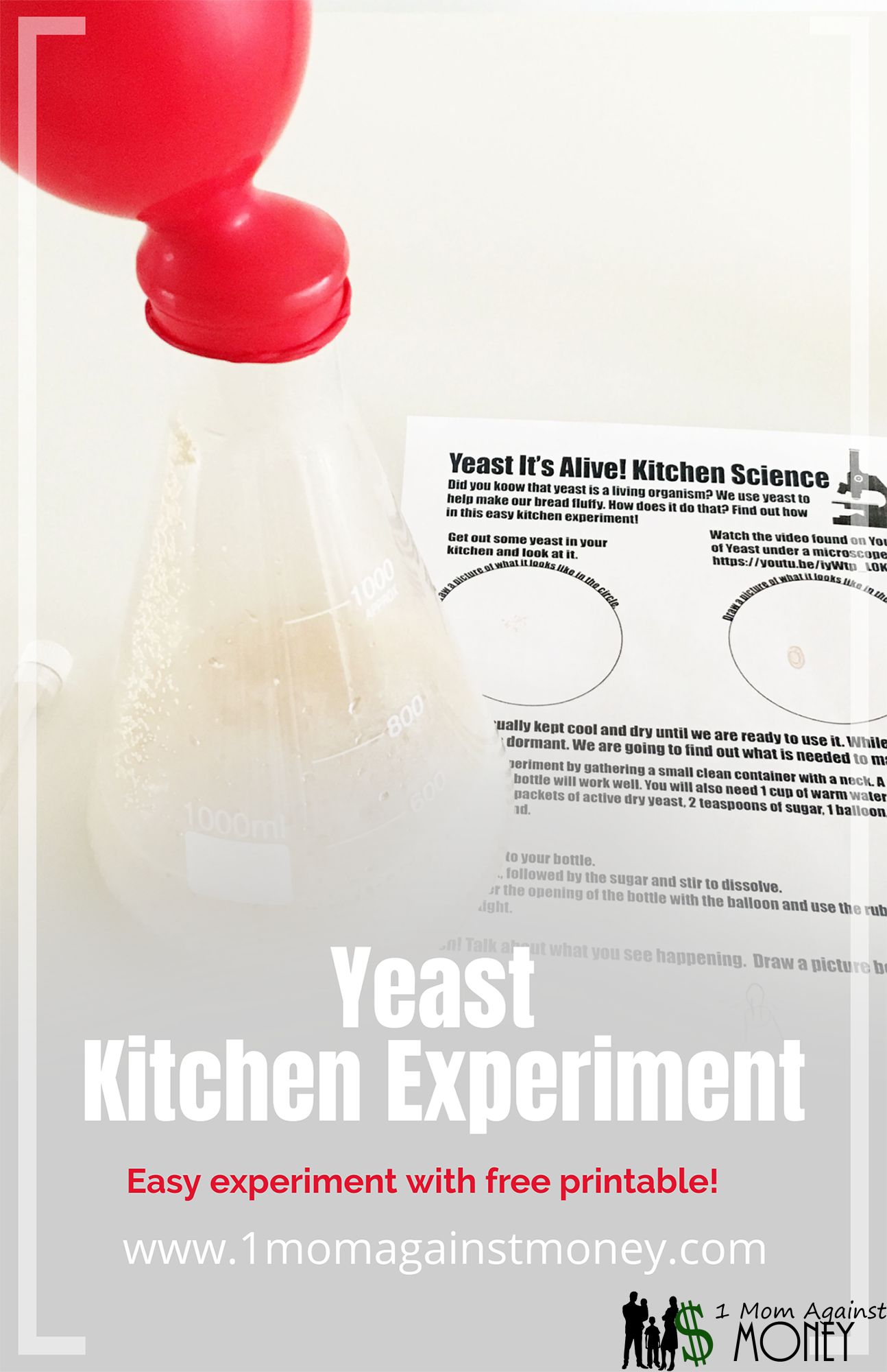 Yeast It's Alive! Kitchen Science
